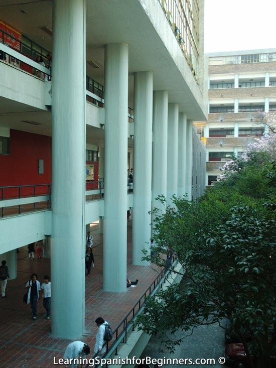 Mexico City - UNAM 7